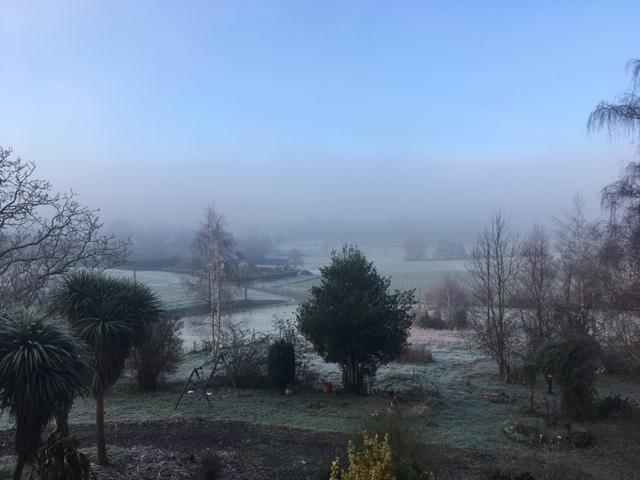 matin gelé