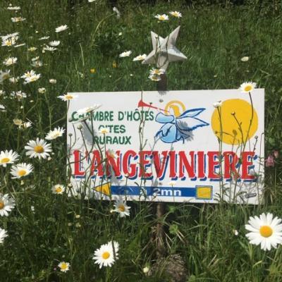 Panneau Angevinière et marguerites